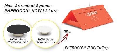 Male Attractant System displays Pherocon NOW L2 Lure and Pherocon VI Delta Trap