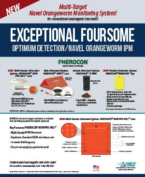PHEROCON-NOW-Four-Star-2020-Line-Up