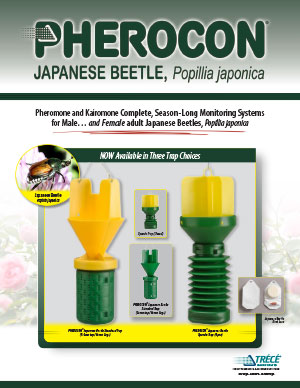 Pherocon Japanese Beetle Thumbnail