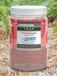 Pherocon SWD Trap Product Photo
